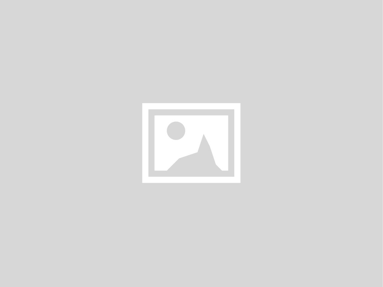 UVI Impact on Growth of Furcifer pardalis Neonates
